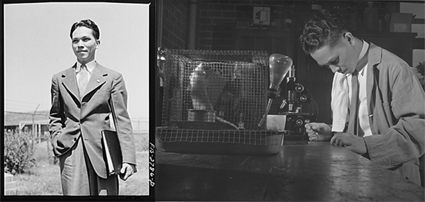 Photos of Miguel Manresa, Jr., at Iowa State University doing research on the effect of vitamins on the reproduction of intestinal protozoa in the rat. Photo 1 and Photo 2 at the Library of Congress.