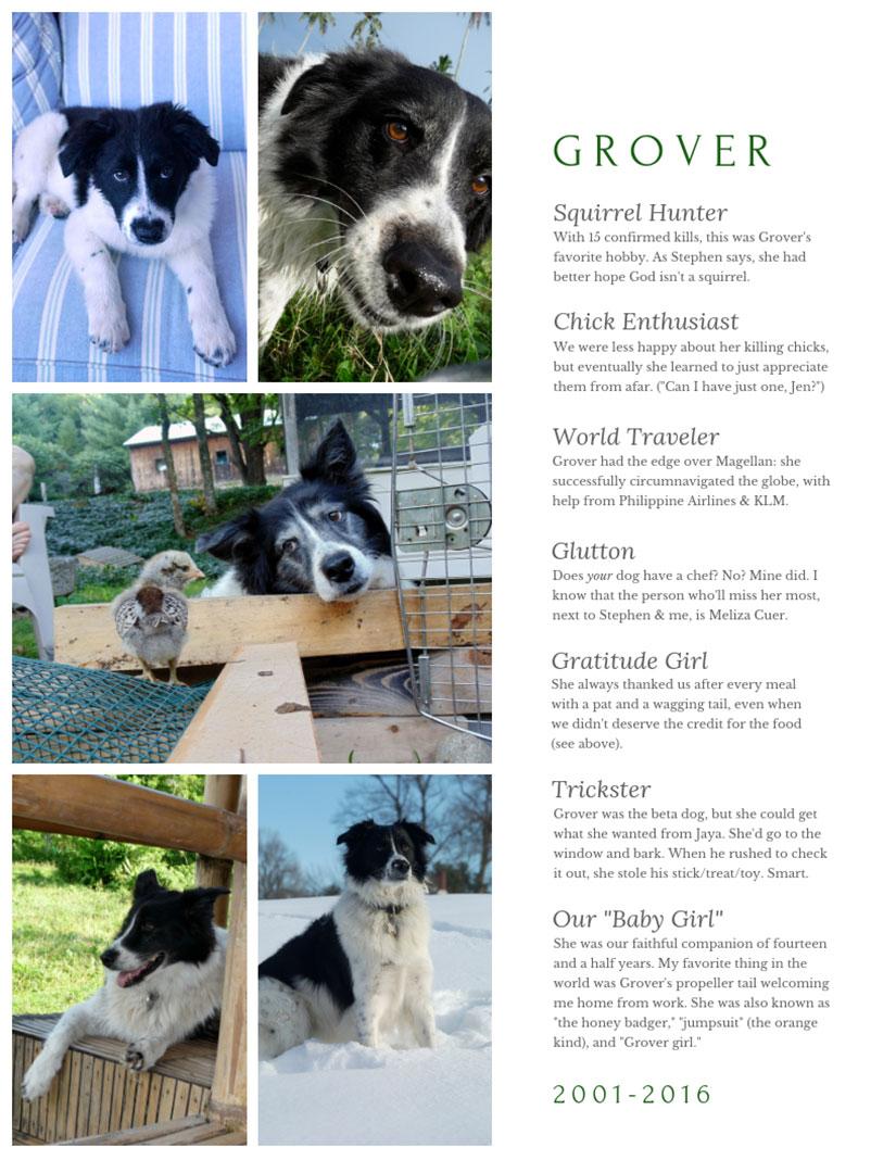 Jaya and Grover for Jennifer Hallock