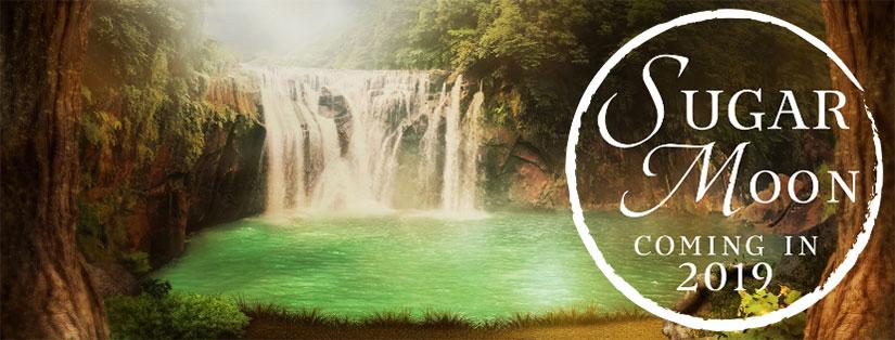 Sugar Moon 2019 waterfall in jungle